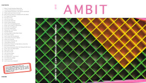 215AMBIT cover_cropped